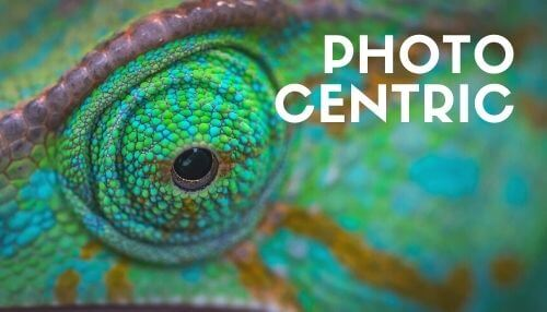 maxart - photo centric - b.card ideas article